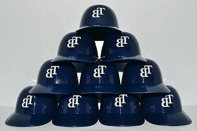 lot of 10 tampa bay rays ice