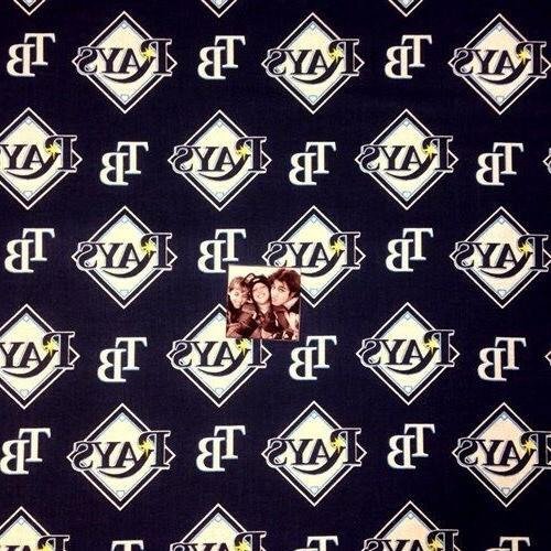 mlb baseball tampa bay rays logos navy