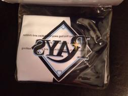 MLB Tampa Bay Rays Children Arm Band Swimmies - Great For Su