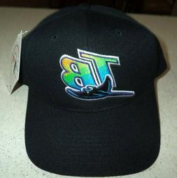 Tampa Bay Devil Rays Throwback Black Snapback Baseball Cap H
