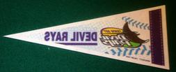 TAMPA BAY DEVIL RAYS VINTAGE MLB LICENSED MINI PENNANT, NEW