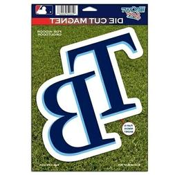 "Tampa Bay Rays WinCraft 6"" x 9"" Car Magnet Indoor/Outdoor NI"