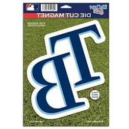 """Tampa Bay Rays WinCraft 6"""" x 9"""" Car Magnet"""