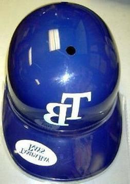 Tampa Bay Rays Rawlings MLB Baseball Team Logo Full Size Sou