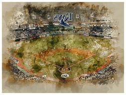 Tampa Bay Rays Poster Watercolor Art Print Man Cave Decor 12