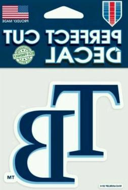 "Tampa Bay Rays ""TB"" Logo 4x4 Perfect Cut Car Decal See Descr"